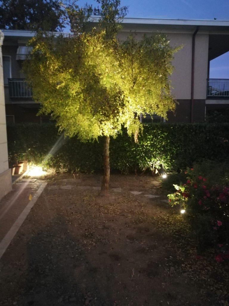 Idee Per Illuminare Un Giardino illuminazione per alberi da giardino: consigli ed idee