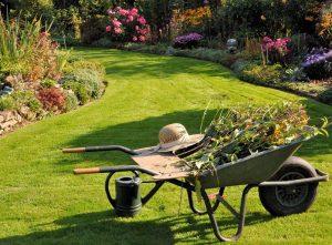 Esempio Manutenzione Giardino